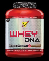 BSN DNA Series Whey Protein