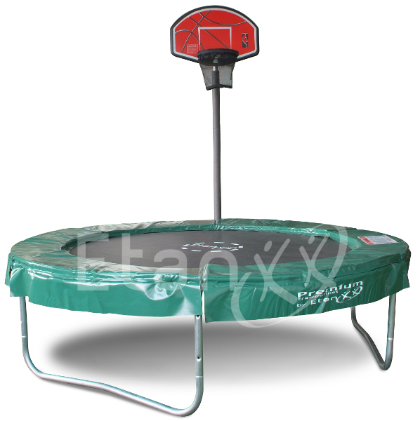 Etan Basketballkorb TopShot Pass