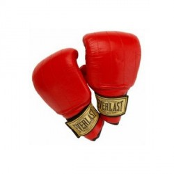 Everlast PVC Boxsackhandschuh Boston jetzt online kaufen