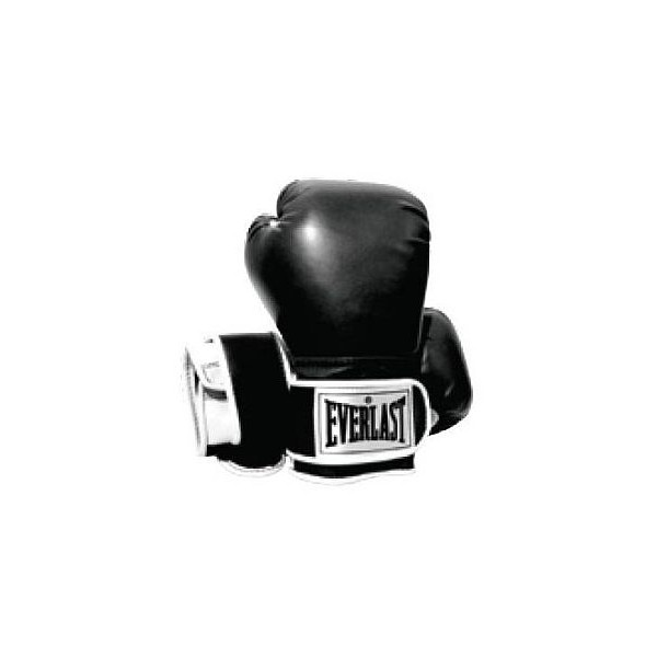 Everlast Boxhandschuh Pro Style