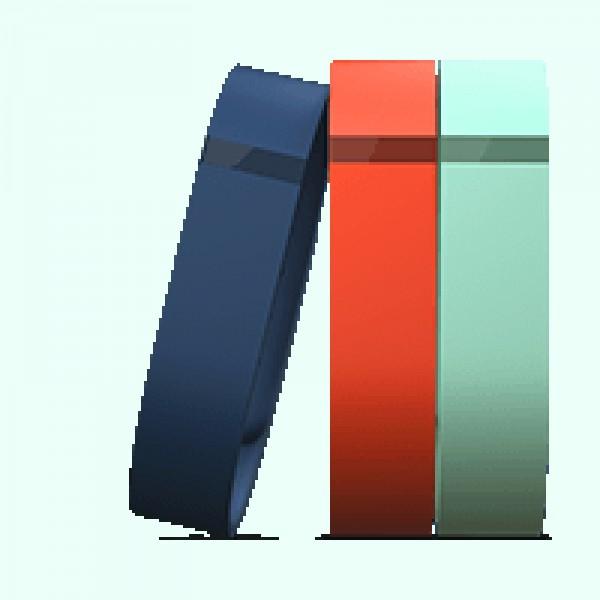 FitBit Zubehörpaket für Armband Flex