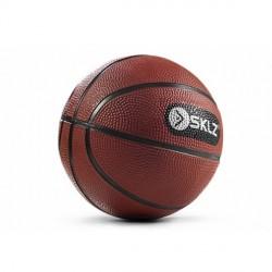 SKLZ Pro Mini Hoop Basketball jetzt online kaufen