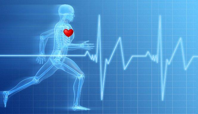 Wichtiges zur Herzfrequenzmessung